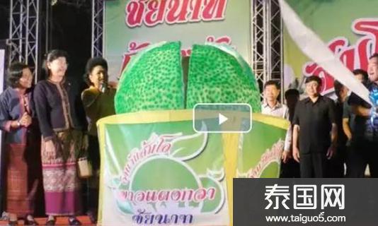 2017泰国猜那府柚